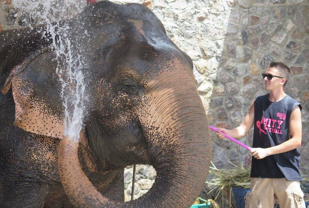 ben-washing-elephant